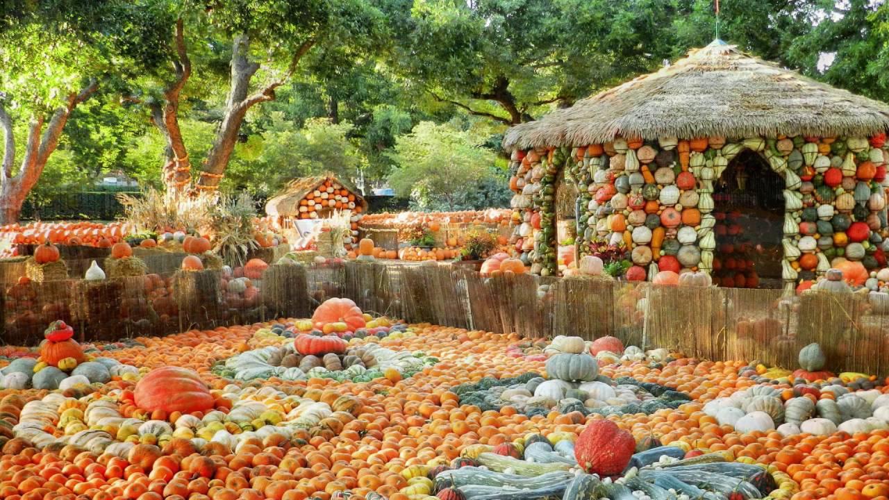 Autumn at the Arboretum - Photo Courtesy of the Dallas Arboretum