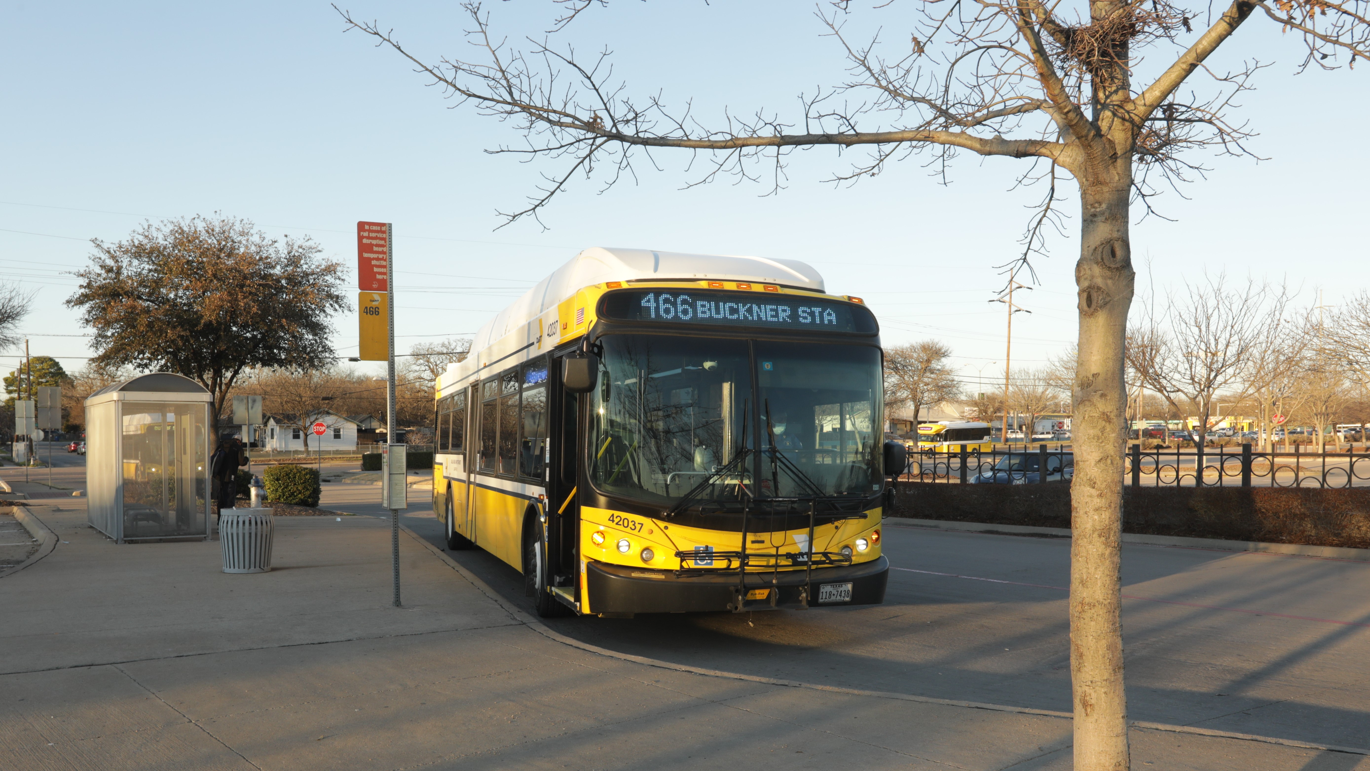 DARTzoom Bus Network Redesign