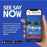 DDI See Say Now app